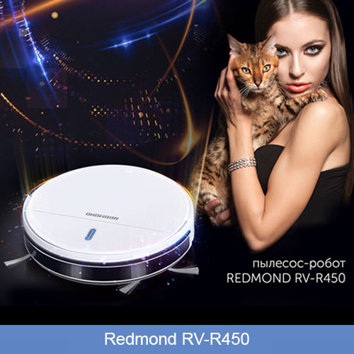 Redmond RV-R450